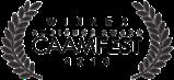 Audience Award CAAMfest 2016